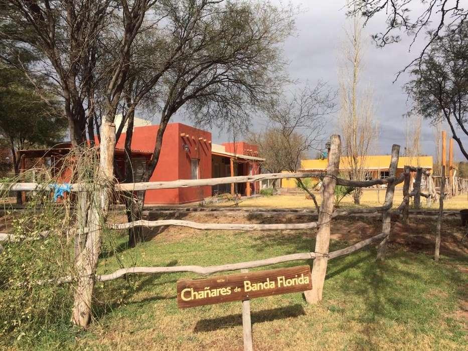 Cabañas Rurales Chañares de Banda Florida - Villa Unión - La Rioja