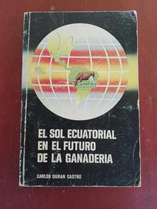 El Sol Ecuatorial en El Futuro de La Gan