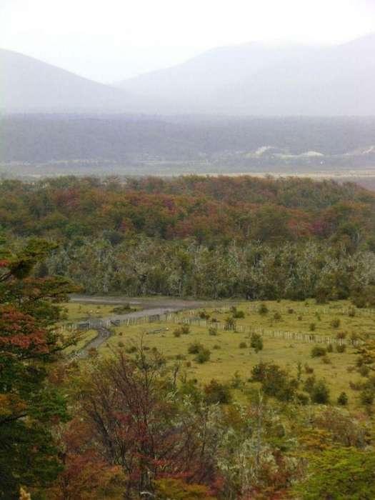 Km 2955 Ruta Nº 3 - Lote - Iwoka Propiedades
