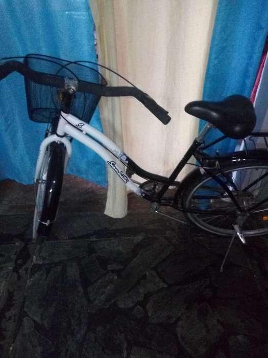 Bicicleta Rodado 26 sin Canasto