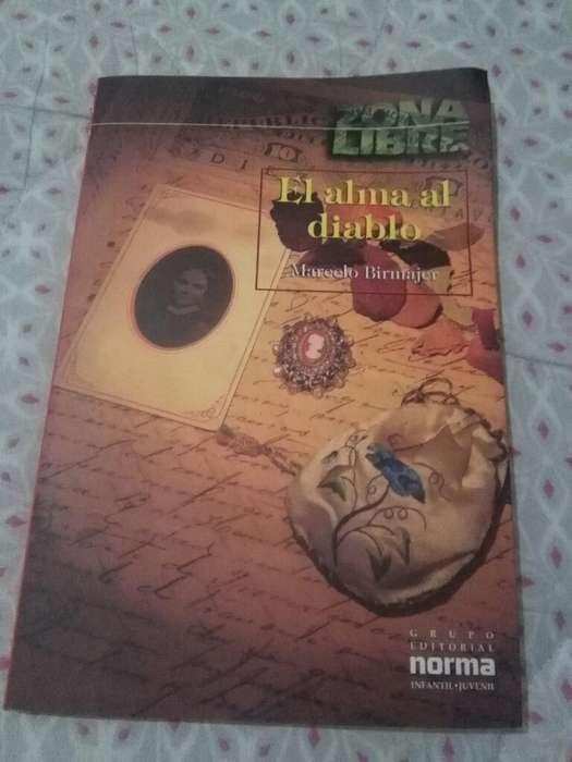 El Alma Al Diablo . Marcelo Birmajer . Libro Grupo Norma