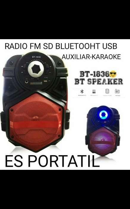Parlante Bluetooh Rario Fm Sd Karaoke