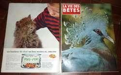 DOS REVISTAS FRANCESAS LA VIE DES BETES AÑO 1964 TAPAS GATITOS . GATOS . ANIMALES
