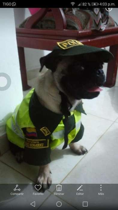 Vendo Disfraz de Policía para Perro