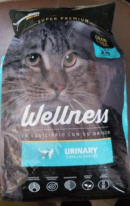 Wellness Urinary Gatos 2kg