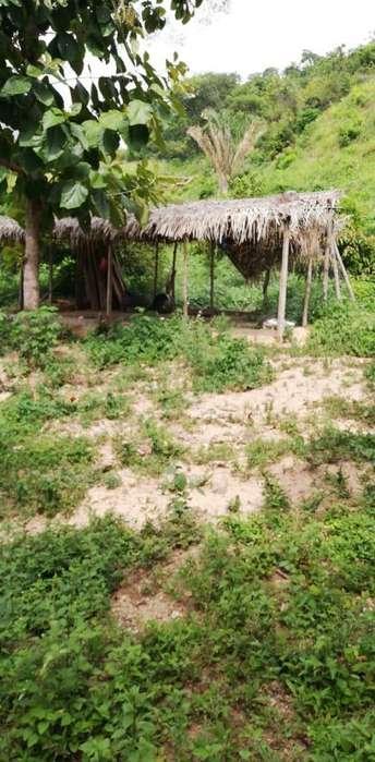 Vendo parcela de 5 hectreas en Manaure cesar