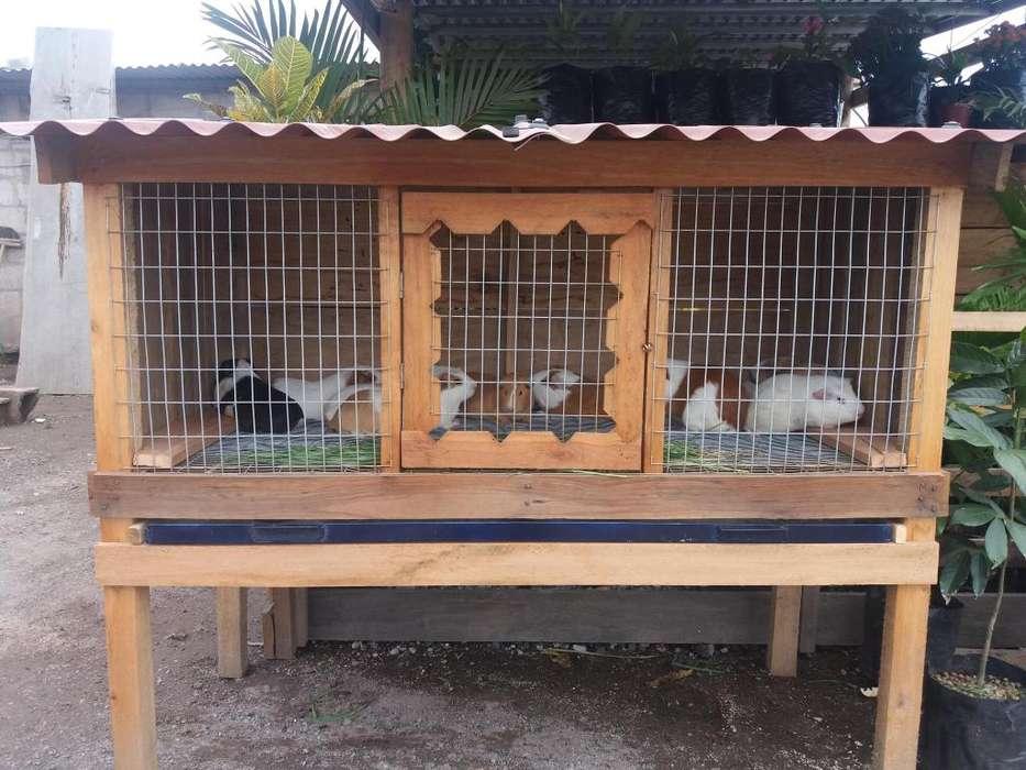 Jaula de Conejos, Cuyes,Pollos Casera