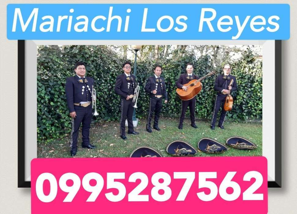 Fiesta con Mariachis en Cumbaya,tumbaco