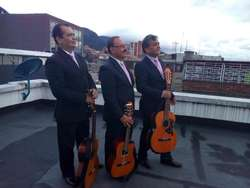 Serenata Musica de cuerda y Trios Bogota