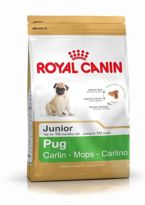 Royal Canin Adult Yorkshire entrega GRATIS en Guayaquil