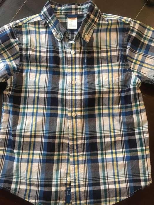 Camisa Talla 5Gymboree