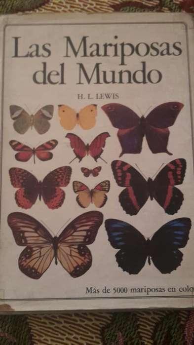 Libros de Entomología Estudio de Insecto