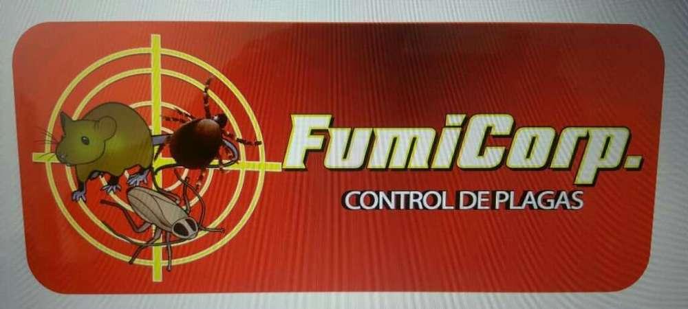 Fumigaciones con Garantía Info0998279896
