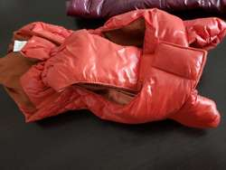 Chaleco Impermeable para Perros