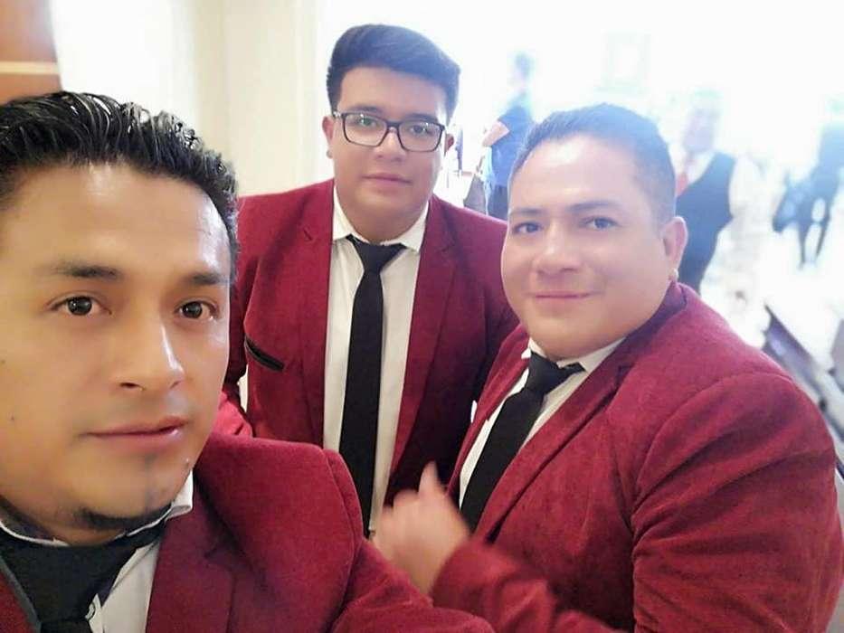 MUSICOS TRIO PROFESIONALES SERENATA 80 DOLARES llamanos whatsap 0999237445