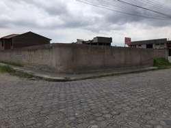 Puente 7, Urbanización Julio Endara, al lado de Hospital Psiquiátrico, calle Manuela Cañizares.