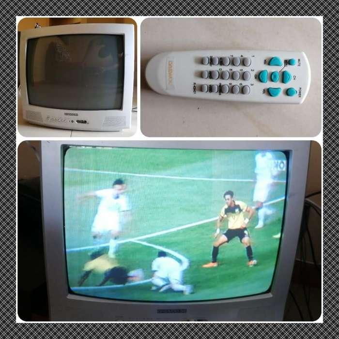 Televisor de 21 Pulgadas