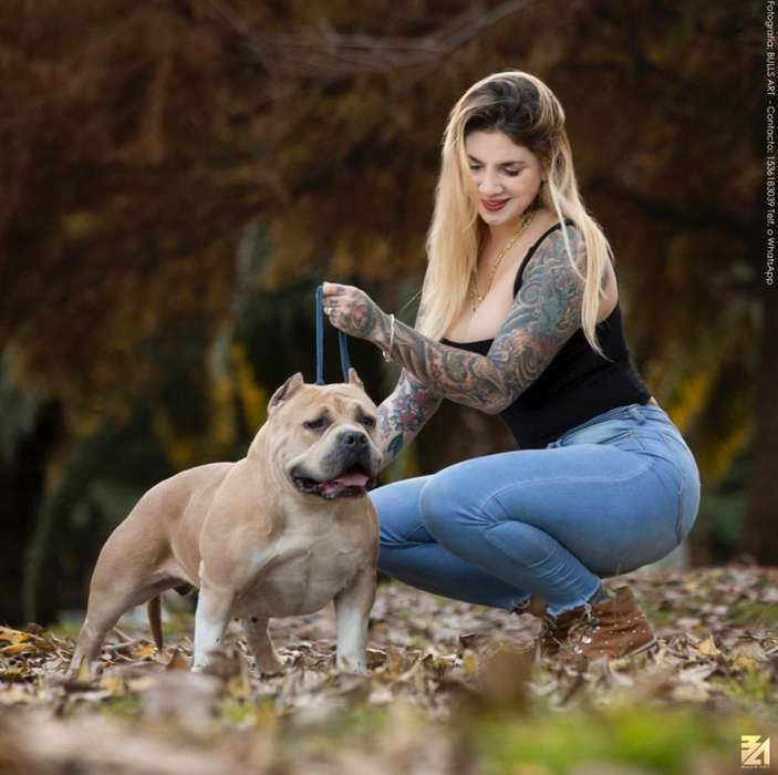 Bully Hembra 3 Años Abkc Nunca Fue Mama