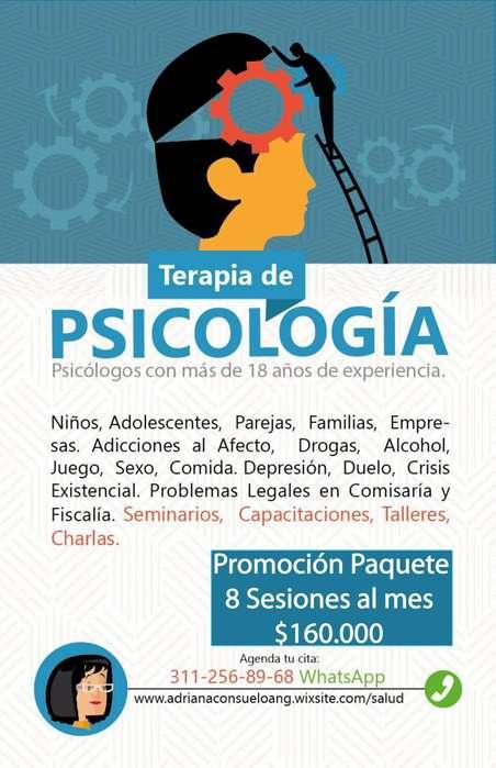 Terapia Pareja Familia 30.000 paquete Psicología, Sexual, Adicciones, Separación, Orientación Vocacional.