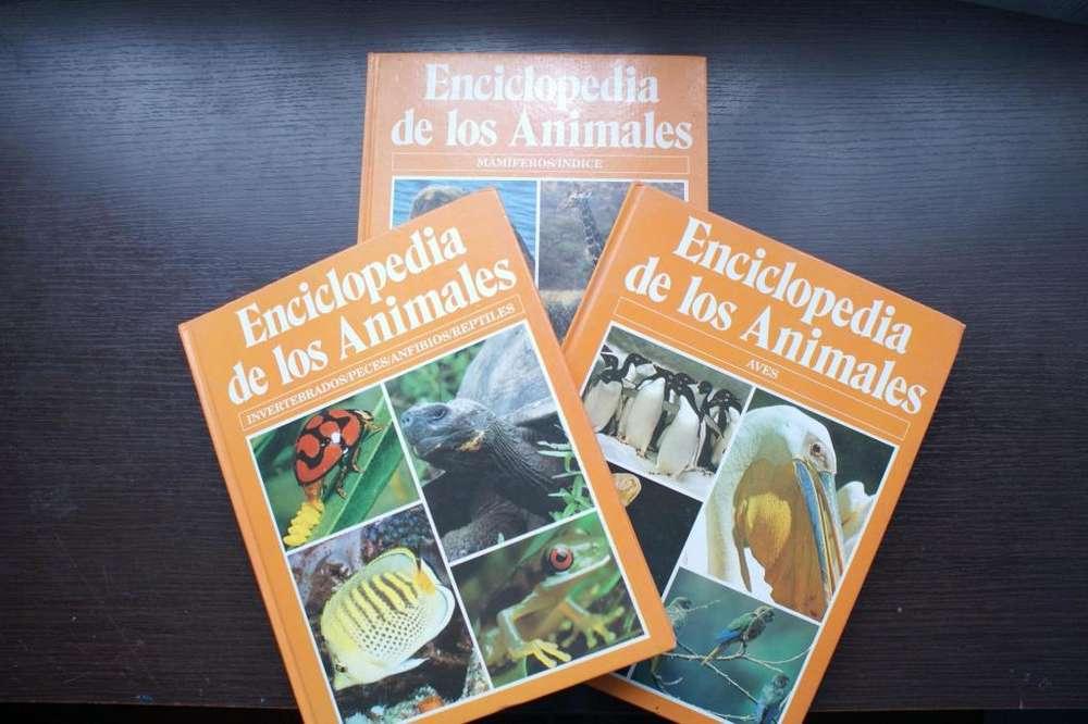 Remate Enciclopedia de los animales (3 tomos) - Ilustrada