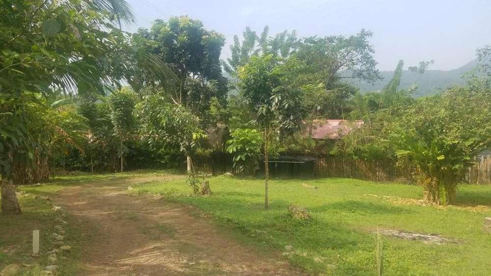 Venta de terreno de en el sector de palomino - wasi_560115