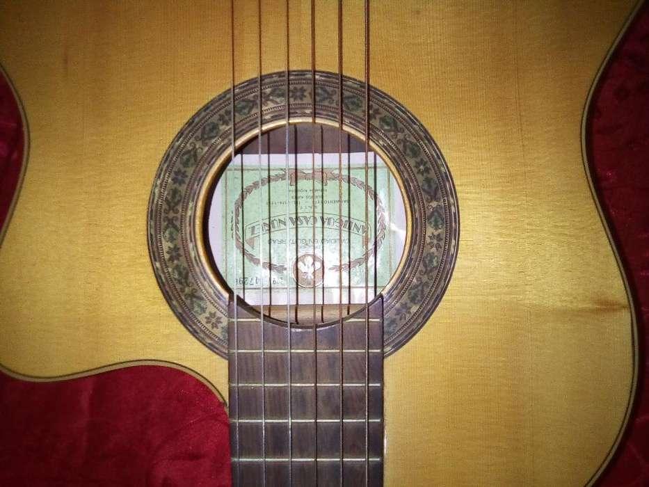 Guitarra Criolla A.c.ñ.