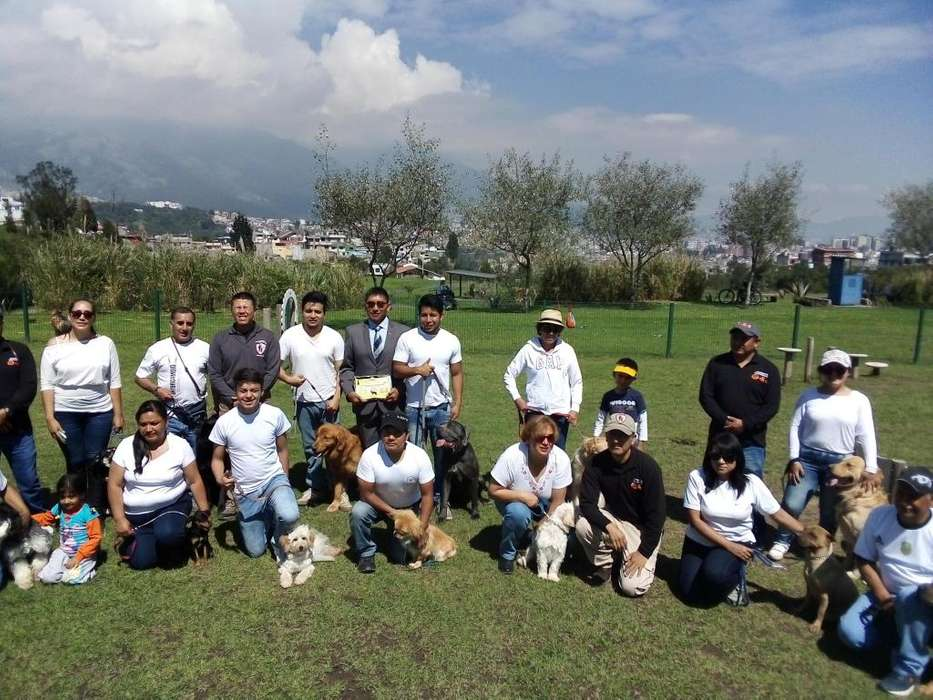 <strong>adiestramiento</strong> CANINO PROFESIONAL