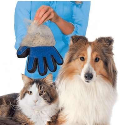 Guante Para Peinar Perros