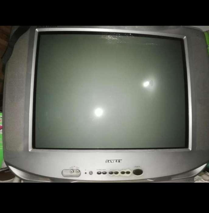 Se Venden Dos Tv 21 Pulgada 3144376422
