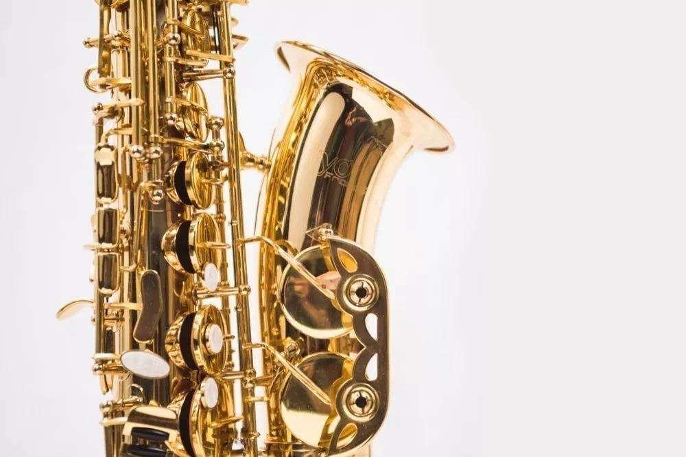 Saxofono alto dorado Saxo alto Estuche Boquilla Nuevos