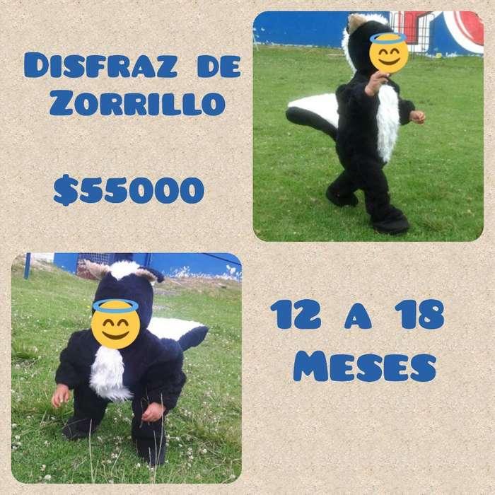 Disfraz de Zorrillo