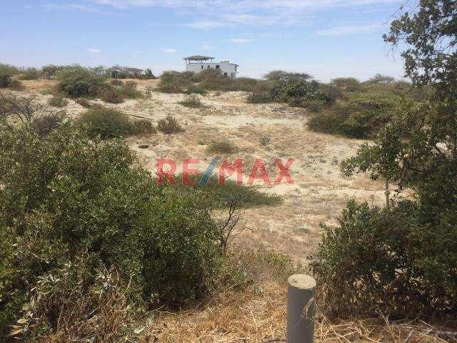 ID 86077 - Terrenos urbanos En Venta a 500m de la playa de Vichayito