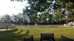 Casuarinas del Pilar Lote / N 103 - UD 62.750 - Terreno en Venta