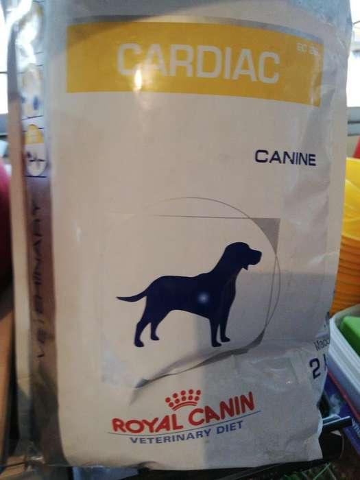 Royal Canin Cardíac Cardíaco 2 Kg Perro