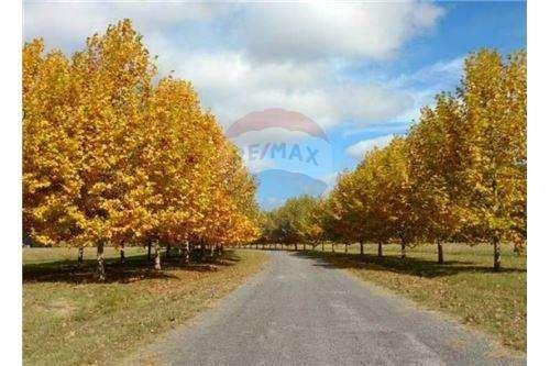 Hermoso terreno en venta en Country La Macarena