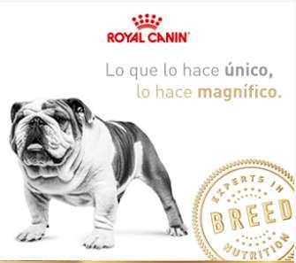 Alimento <strong>perros</strong> Royal Canin Superpremium