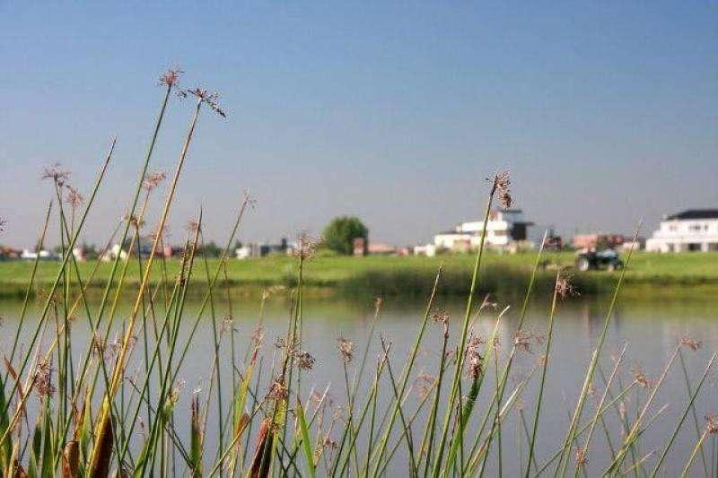 Imperdible lote a la laguna, inmejorabe ubicacion