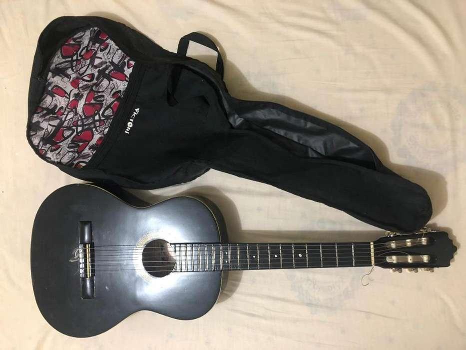 Guitarras Palmer Y Freedom