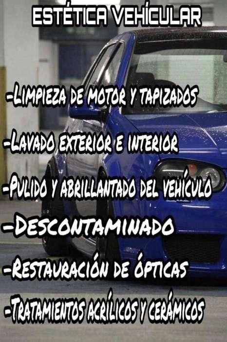 Servicios de estética vehícular!!