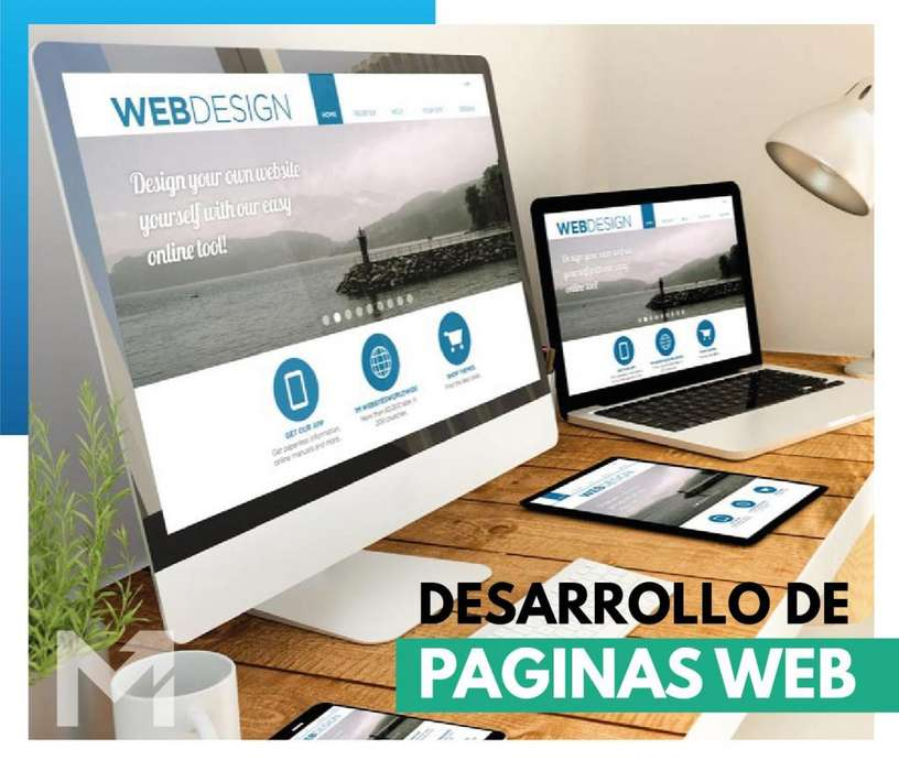 Desarrollo de paginas web profesionales al mejor precio