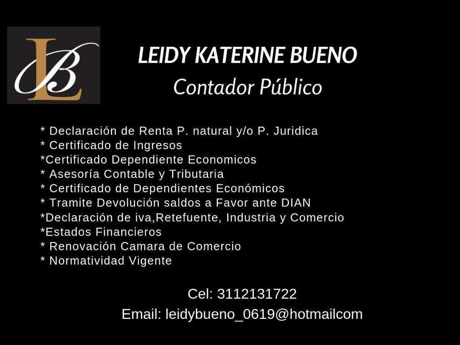 SERVICIOS DE CONTADOR PUBLICO