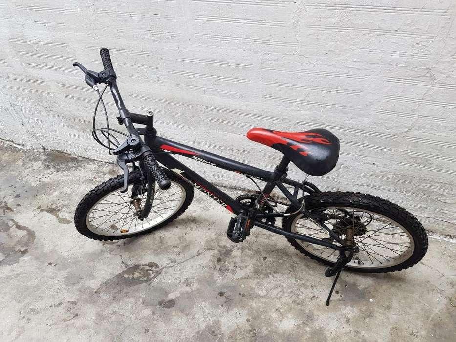 Bicicleta Montañera Aro 20'