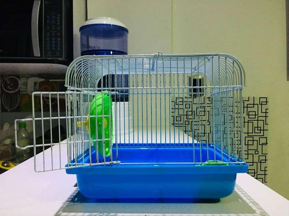 Casa para Hamster