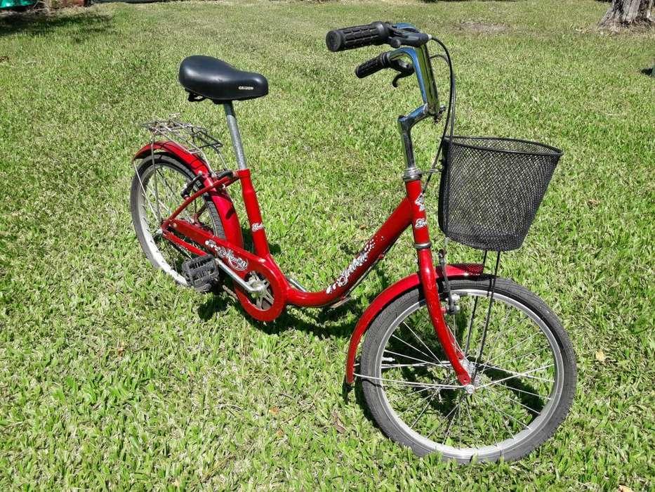 Bicicleta Gribom