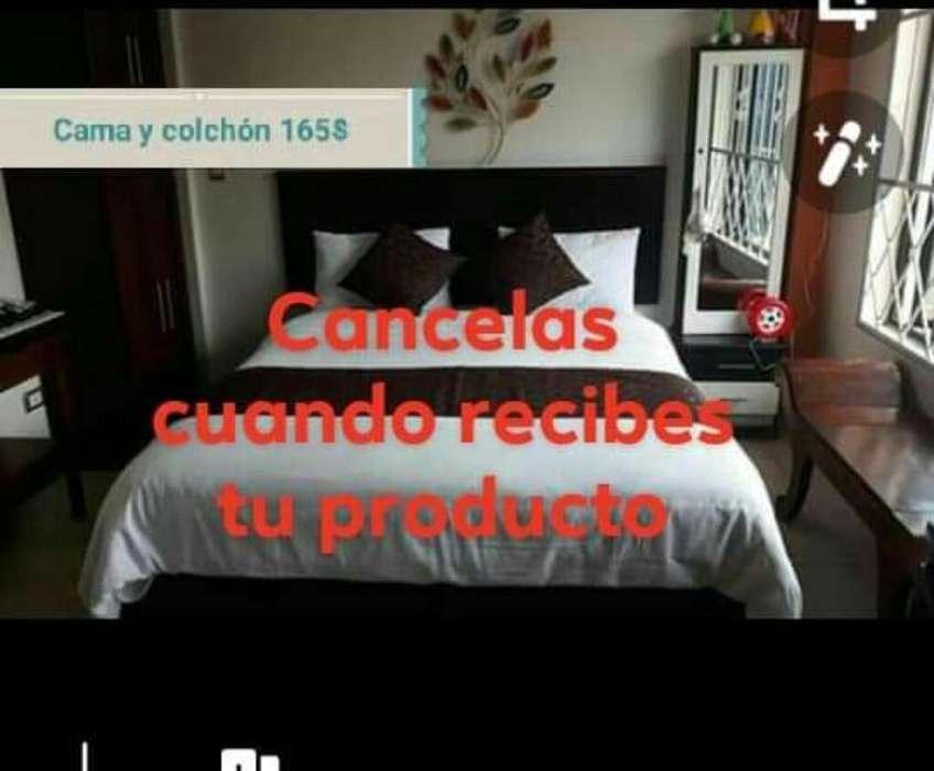 Cama Y Colchón 165 Transporte Gratis