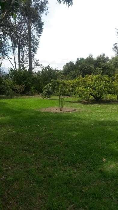 Gaspar de Villaroel, vendo terreno 9000 m2, ideal Proyecto Inmobiliario.