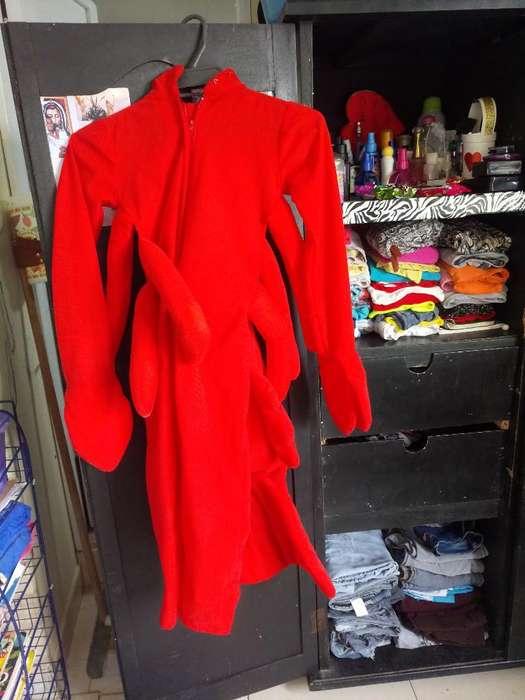 Vendo Disfraz de Langosta
