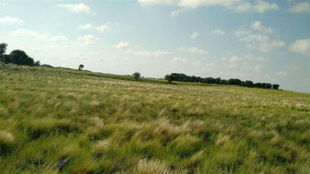 Rolon 100 - UD 1.800 - Campo en Venta