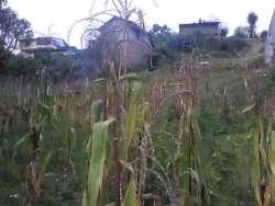 Terreno con Casa
