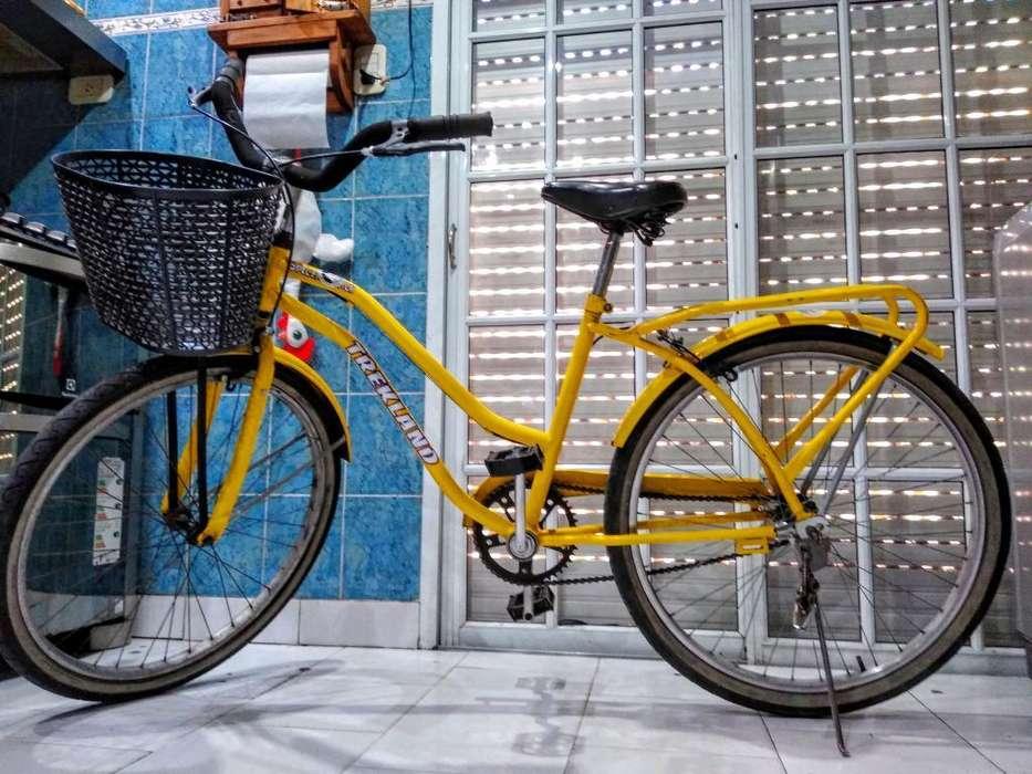 Bicicleta de Paseo Rodado 26 con Canasto